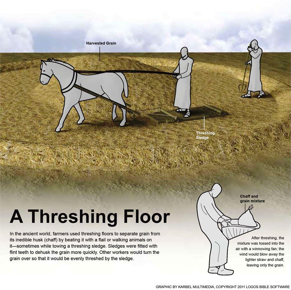 Biblical threshing floor images for At floor or on floor