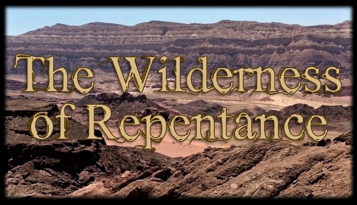 THE WILDERNESS OF REPENTANCE